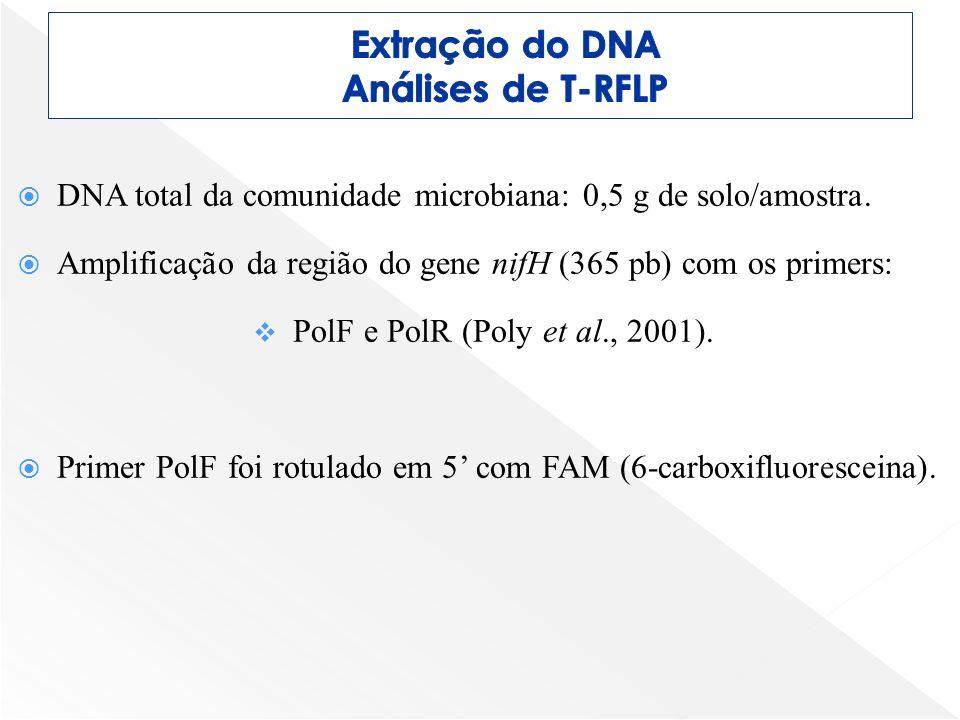 Extração do DNA Análises de T-RFLP