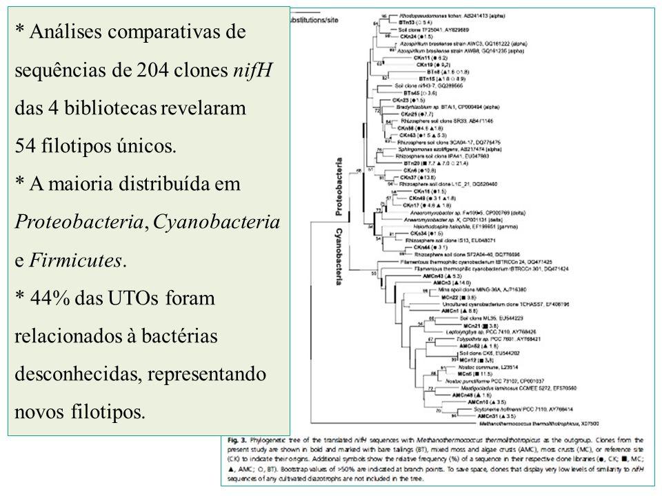 * Análises comparativas de sequências de 204 clones nifH das 4 bibliotecas revelaram 54 filotipos únicos.