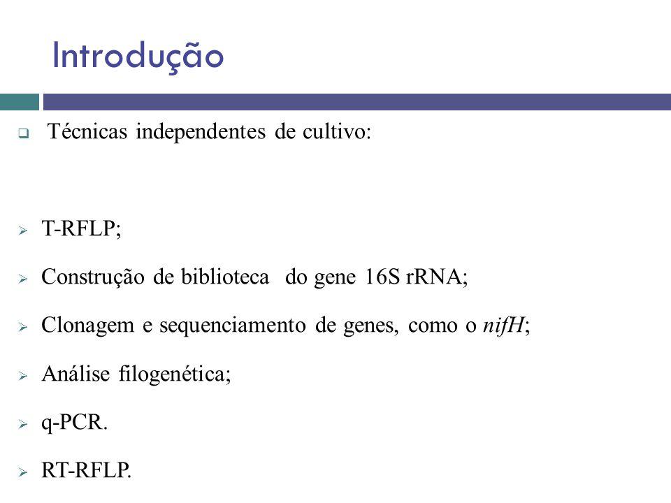 Introdução Técnicas independentes de cultivo: T-RFLP;