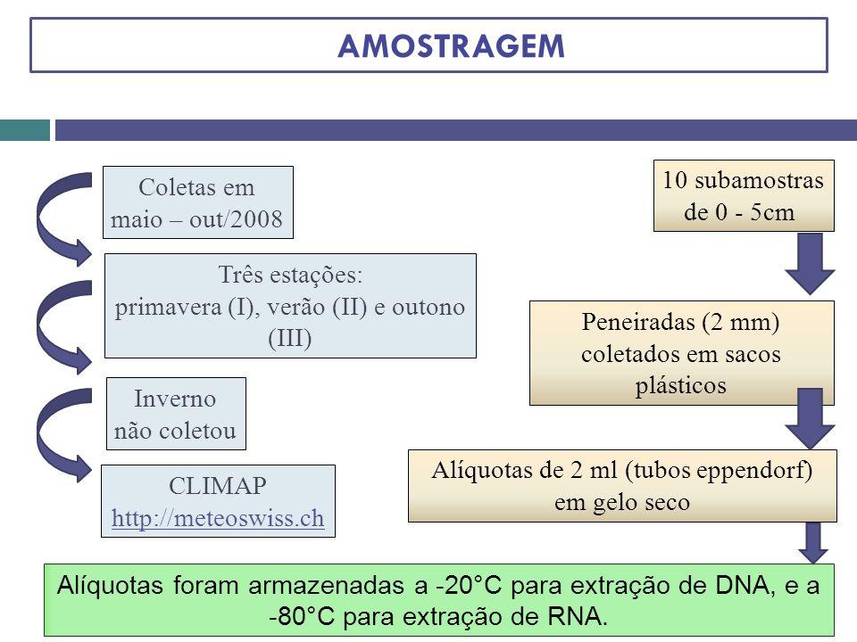 AMOSTRAGEM 10 subamostras Coletas em de 0 - 5cm maio – out/2008
