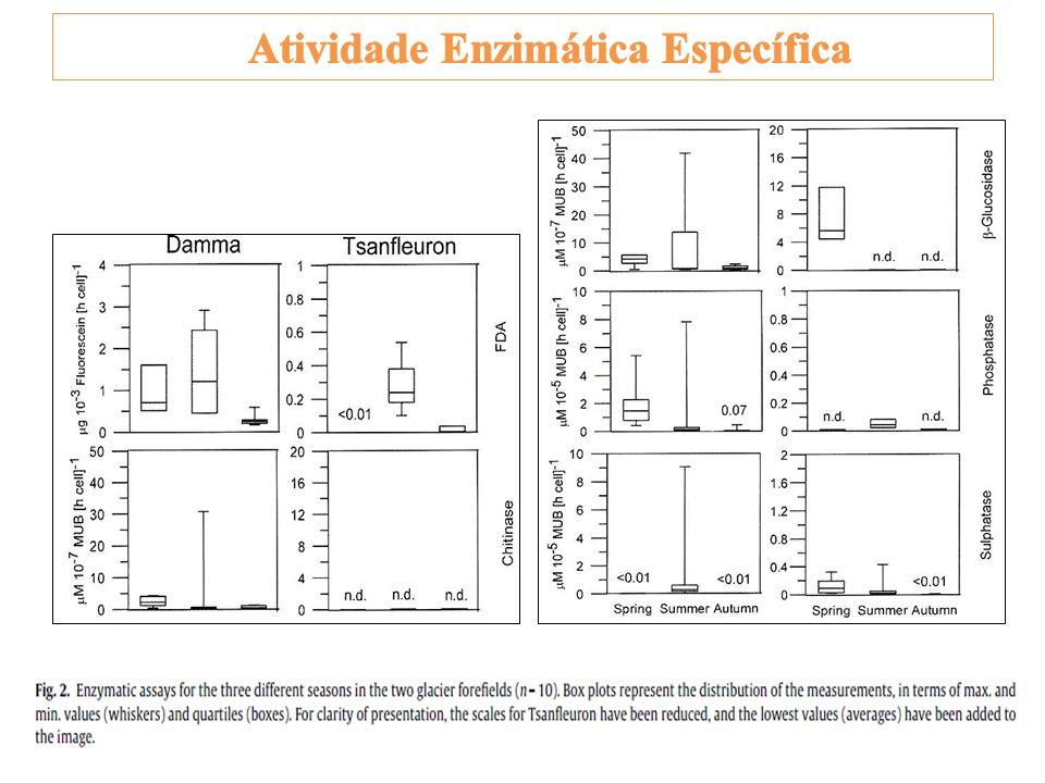 Atividade Enzimática Específica