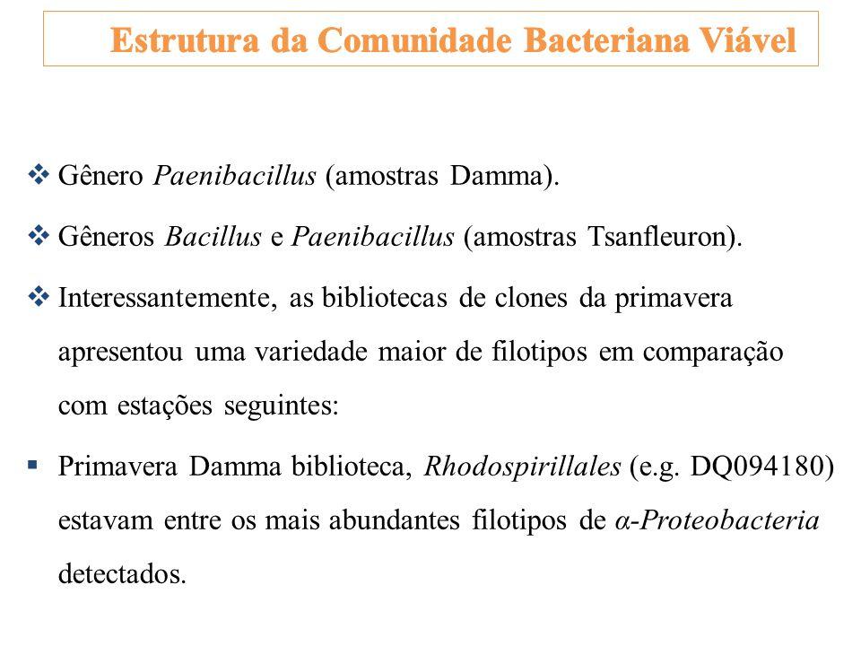 Estrutura da Comunidade Bacteriana Viável