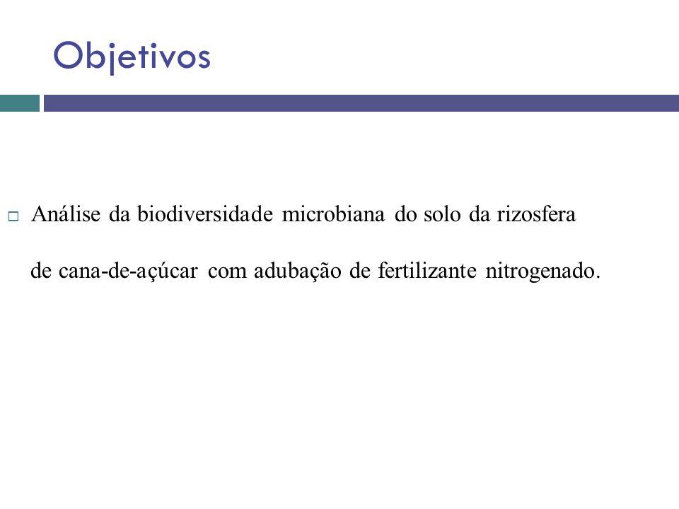 Objetivos Análise da biodiversidade microbiana do solo da rizosfera