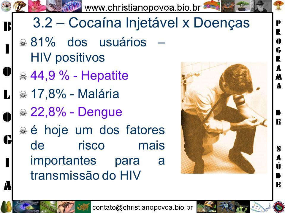 3.2 – Cocaína Injetável x Doenças