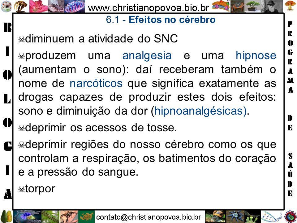 diminuem a atividade do SNC