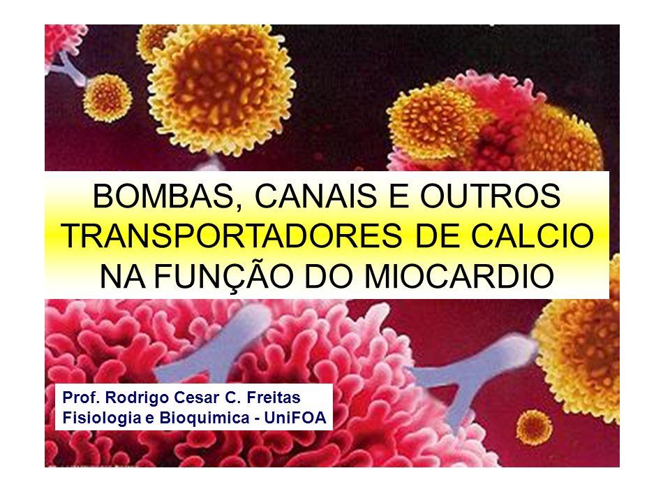 BOMBAS, CANAIS E OUTROS TRANSPORTADORES DE CALCIO