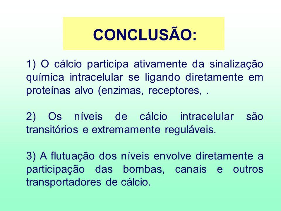 CONCLUSÃO: 1) O cálcio participa ativamente da sinalização química intracelular se ligando diretamente em proteínas alvo (enzimas, receptores, .