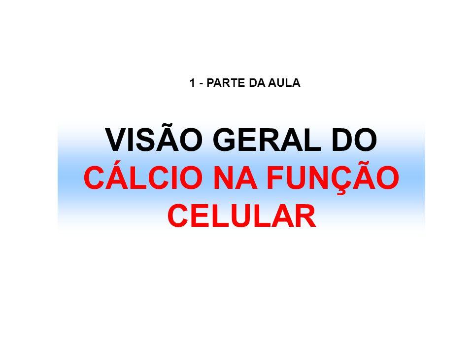 VISÃO GERAL DO CÁLCIO NA FUNÇÃO CELULAR