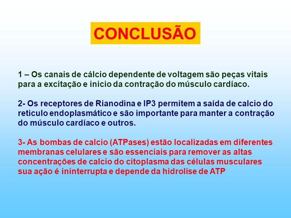 CONCLUSÃO1 – Os canais de cálcio dependente de voltagem são peças vitais para a excitação e inicio da contração do músculo cardíaco.