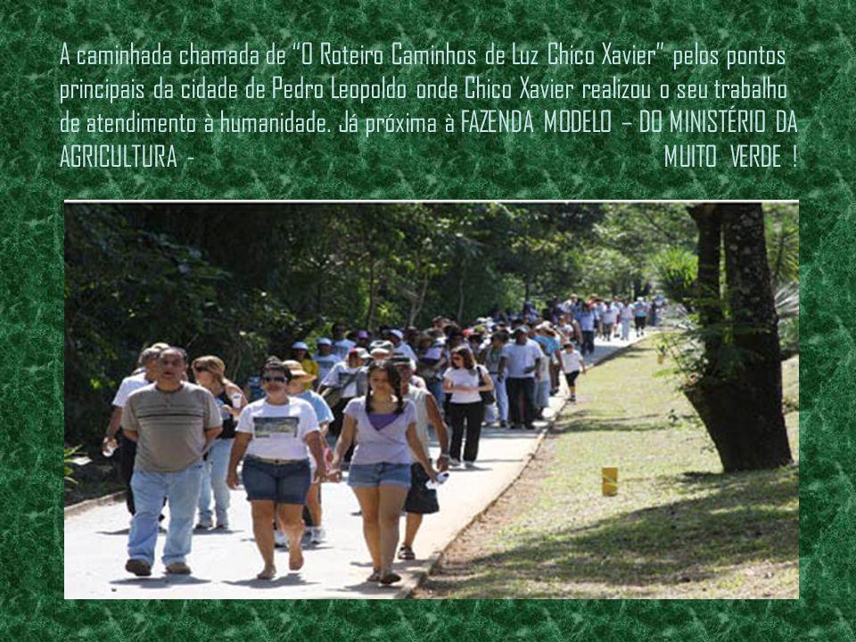 A caminhada chamada de O Roteiro Caminhos de Luz Chico Xavier pelos pontos principais da cidade de Pedro Leopoldo onde Chico Xavier realizou o seu trabalho de atendimento à humanidade.