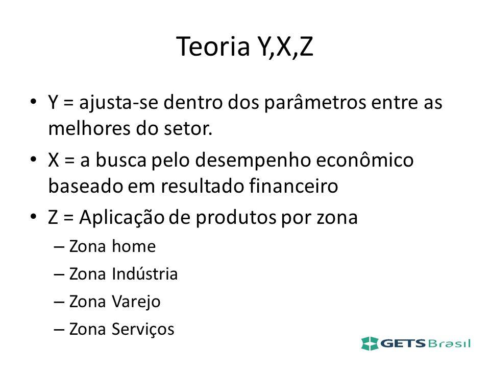 Teoria Y,X,Z Y = ajusta-se dentro dos parâmetros entre as melhores do setor. X = a busca pelo desempenho econômico baseado em resultado financeiro.