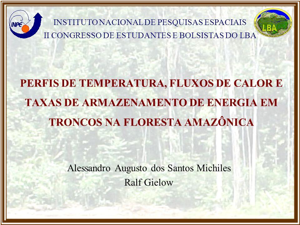 Alessandro Augusto dos Santos Michiles Ralf Gielow