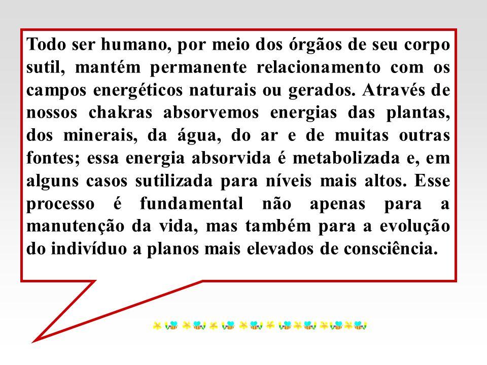 Todo ser humano, por meio dos órgãos de seu corpo sutil, mantém permanente relacionamento com os campos energéticos naturais ou gerados.