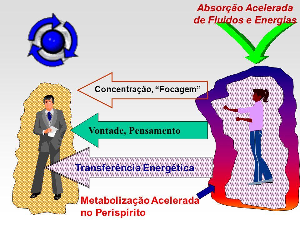 Absorção Acelerada de Fluidos e Energias Transferência Energética