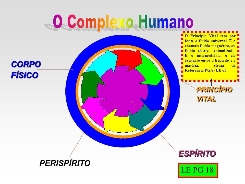 O Complexo Humano CORPO FÍSICO ESPÍRITO PERISPÍRITO LE PG 18 PRINCÍPIO