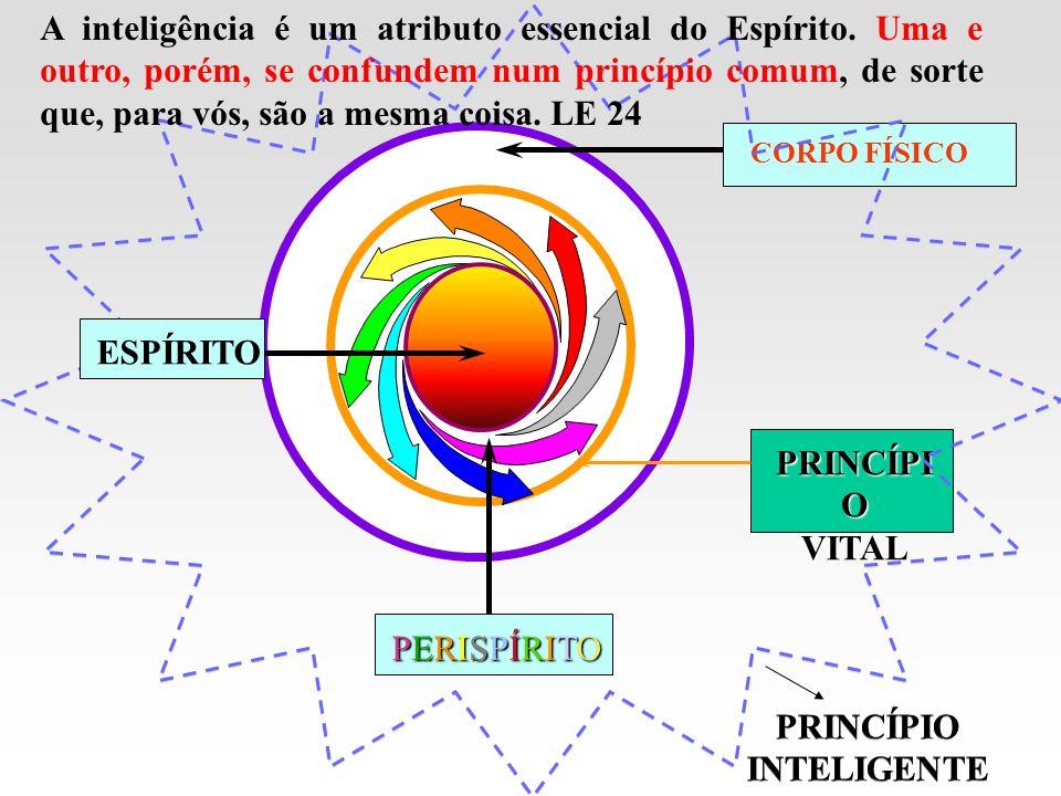 PRINCÍPIO INTELIGENTE PRINCÍPIO INTELIGENTE PRINCÍPIO VITAL