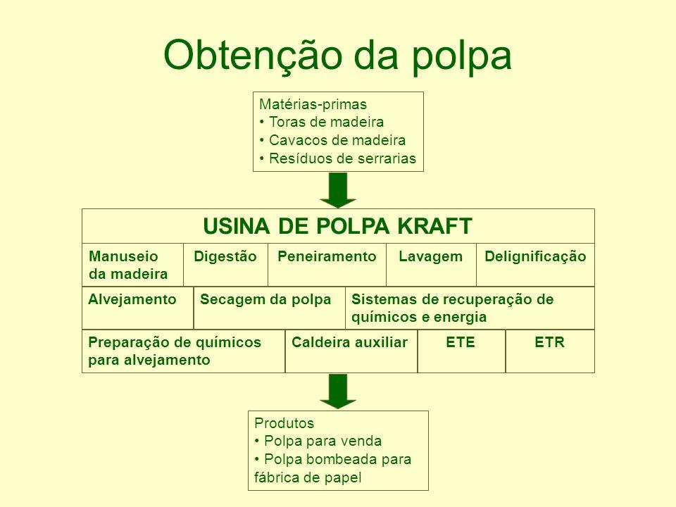 Obtenção da polpa USINA DE POLPA KRAFT Matérias-primas