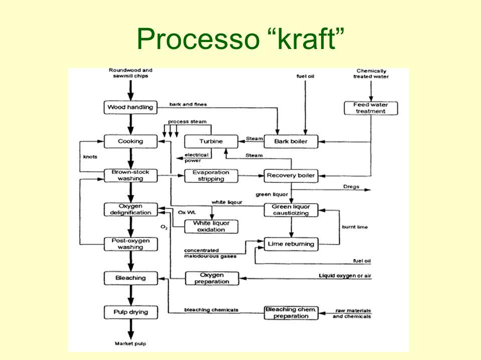 Processo kraft