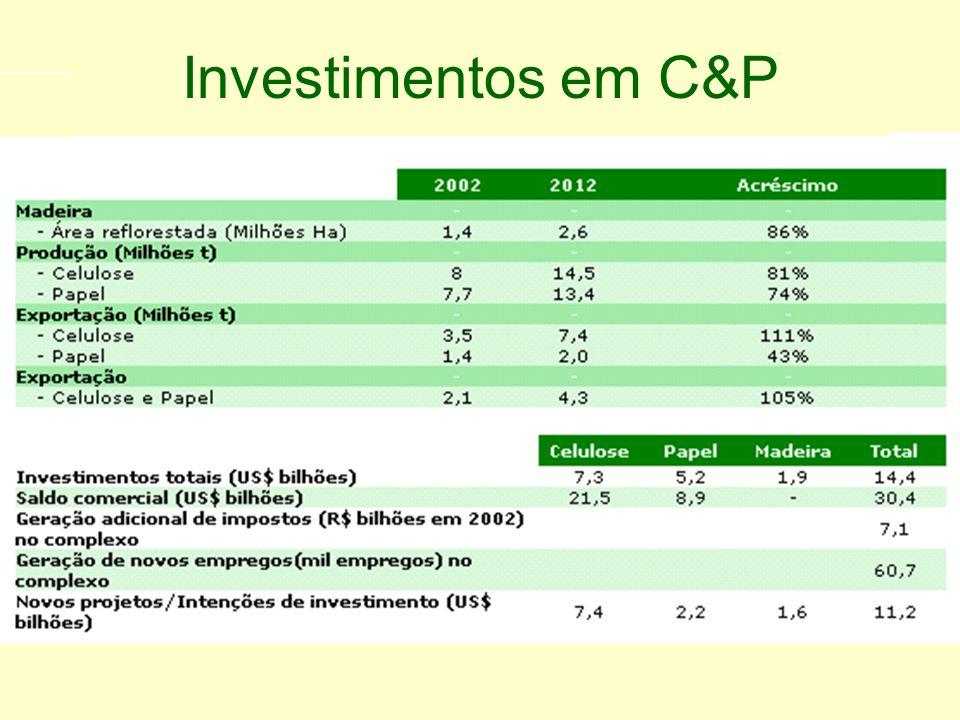 Programa de investimento Setor de Celulose e Papel 2003 - 2012