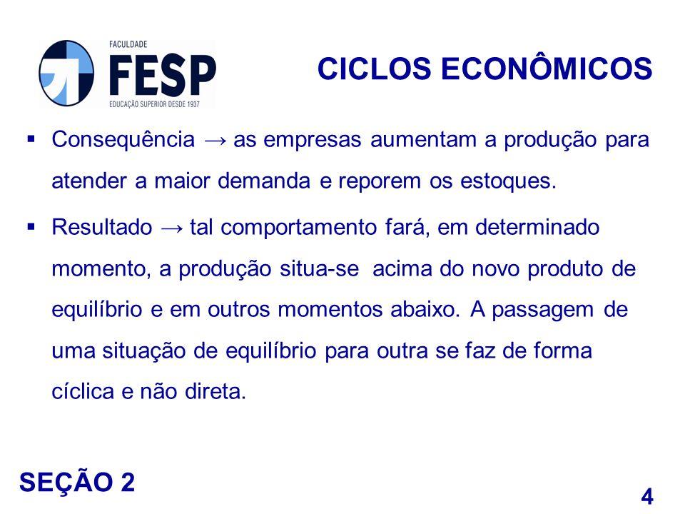 CICLOS ECONÔMICOS SEÇÃO 2