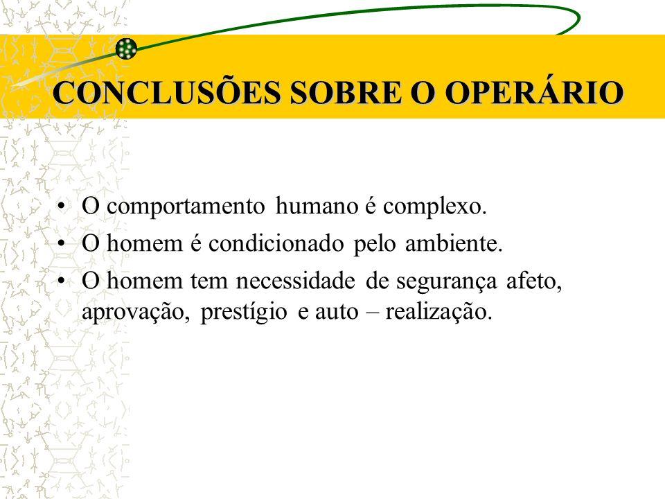 CONCLUSÕES SOBRE O OPERÁRIO