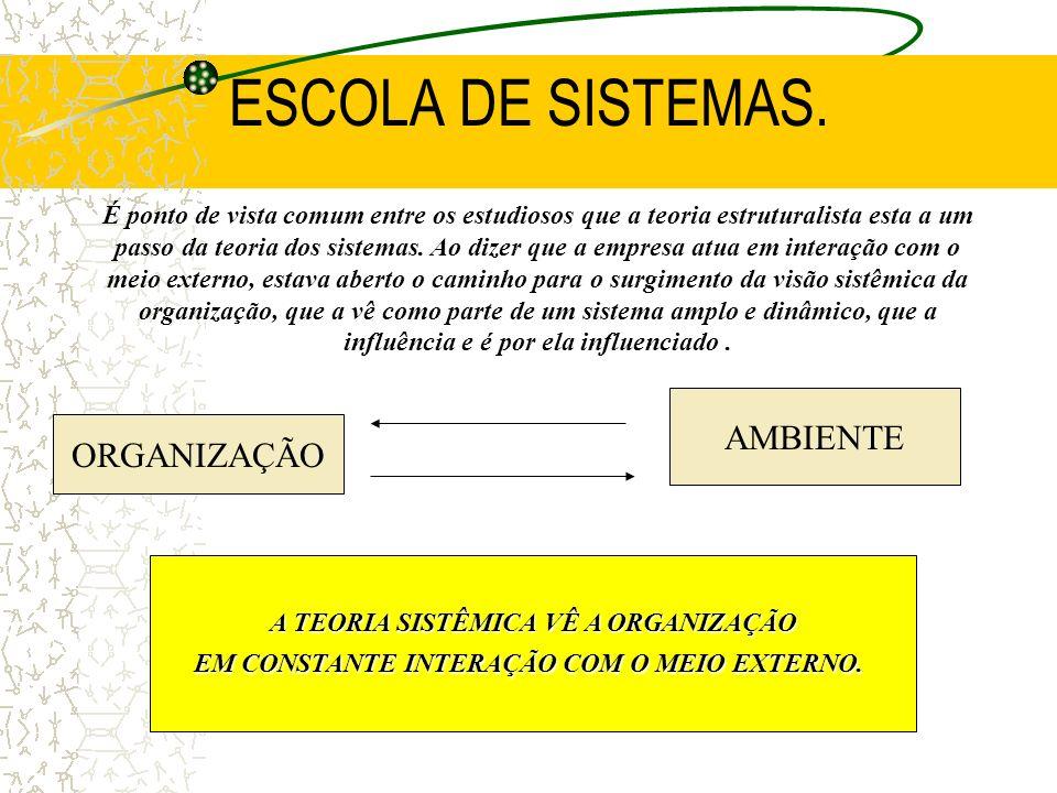 ESCOLA DE SISTEMAS. AMBIENTE ORGANIZAÇÃO
