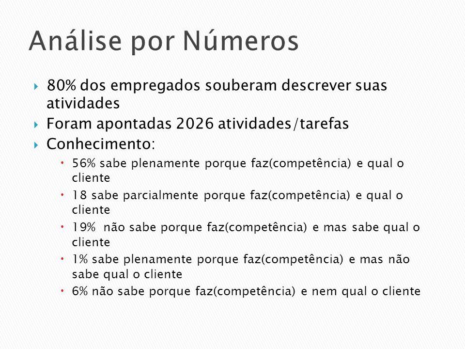 Análise por Números 80% dos empregados souberam descrever suas atividades. Foram apontadas 2026 atividades/tarefas.
