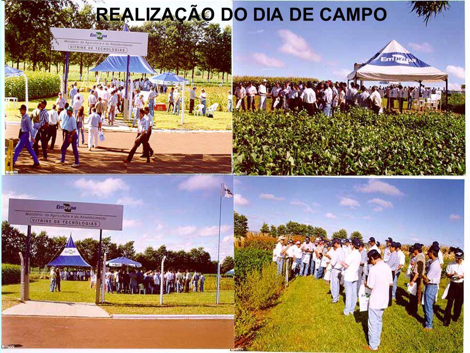 REALIZAÇÃO DO DIA DE CAMPO