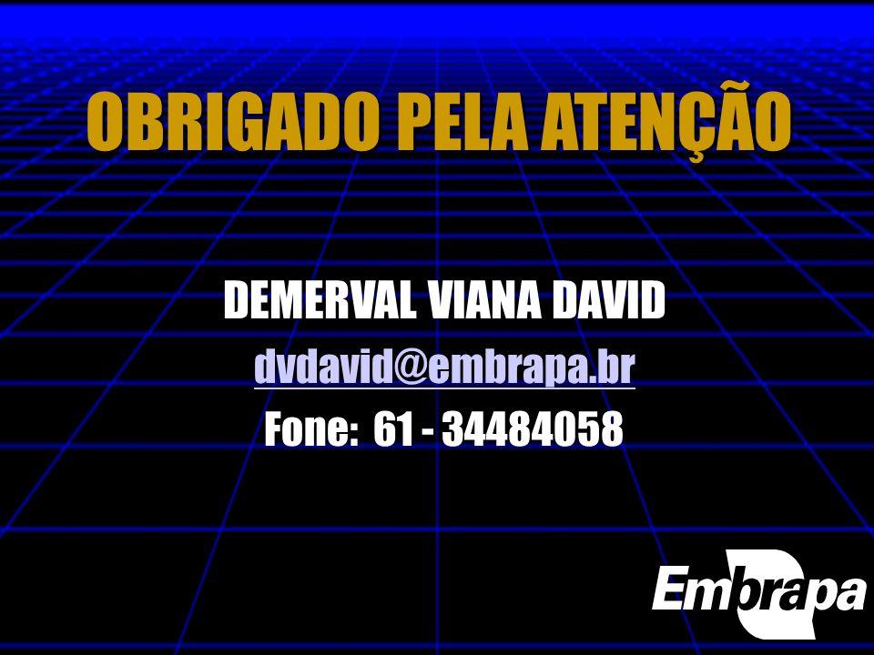 OBRIGADO PELA ATENÇÃO DEMERVAL VIANA DAVID dvdavid@embrapa.br