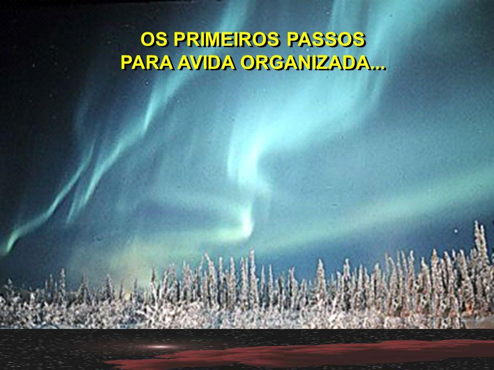 OS PRIMEIROS PASSOS PARA AVIDA ORGANIZADA...