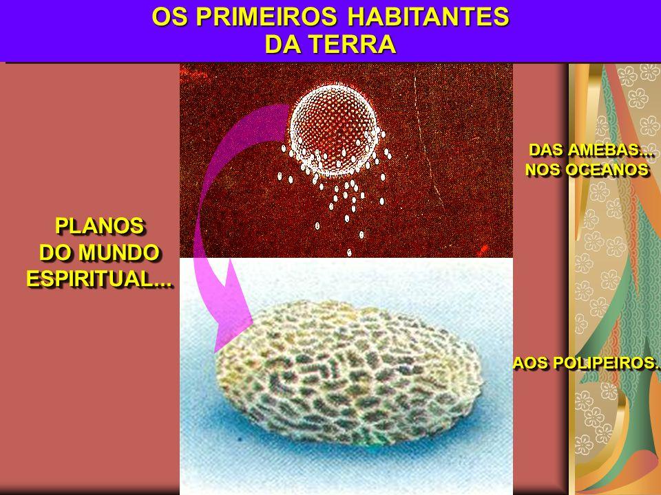 OS PRIMEIROS HABITANTES DA TERRA PLANOS DO MUNDO ESPIRITUAL...