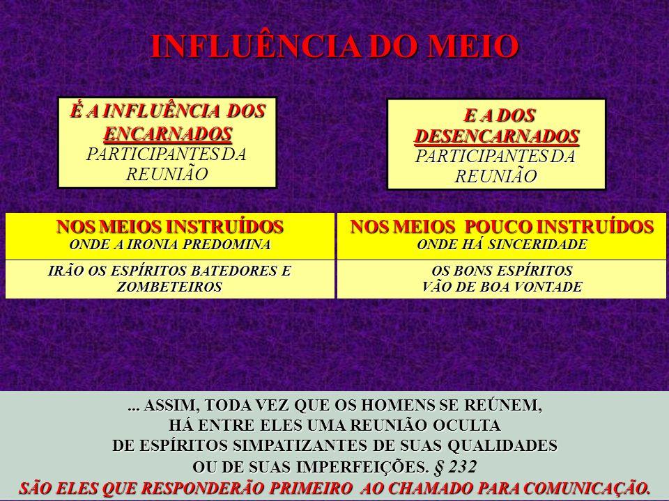 INFLUÊNCIA DO MEIO E A DOS DESENCARNADOS PARTICIPANTES DA REUNIÃO