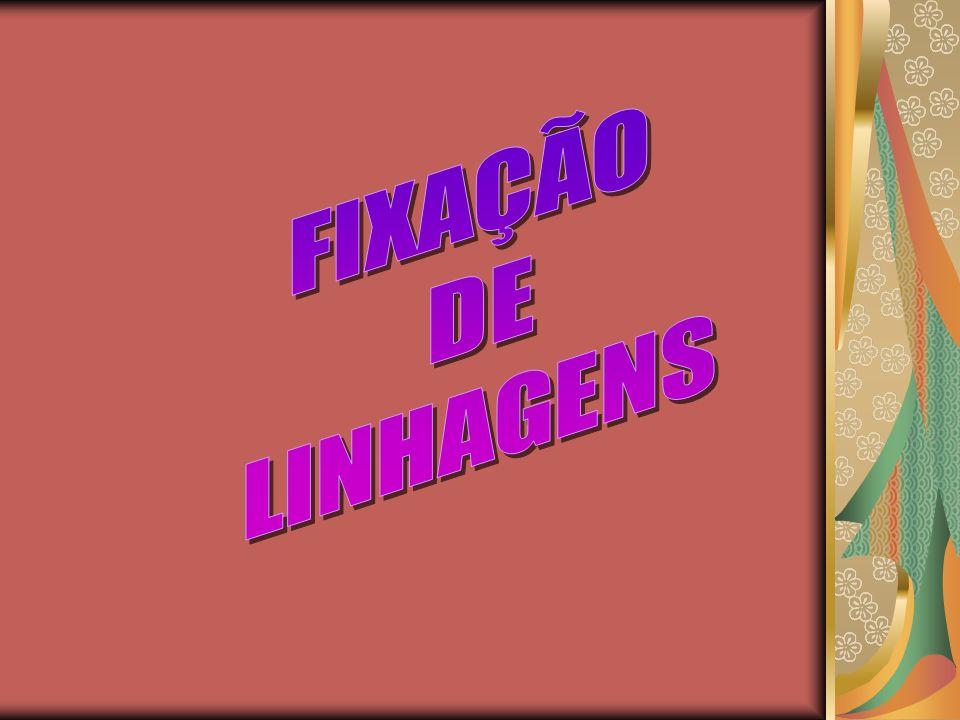 FIXAÇÃO DE LINHAGENS