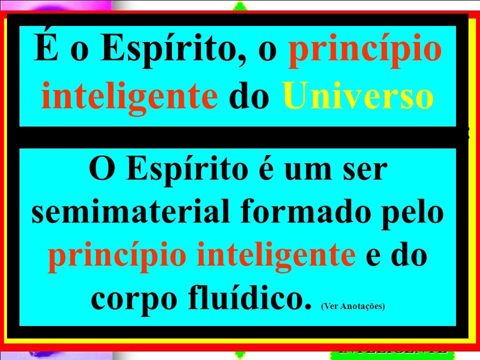 É o Espírito, o princípio inteligente do Universo