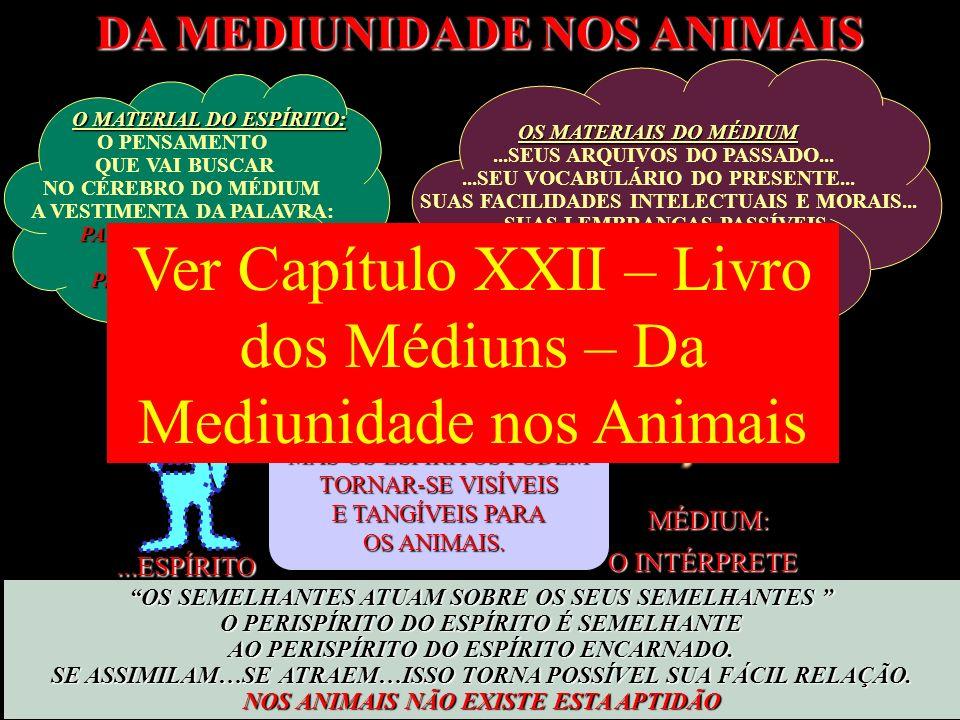 Ver Capítulo XXII – Livro dos Médiuns – Da Mediunidade nos Animais