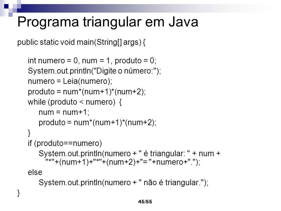 Programa triangular em Java
