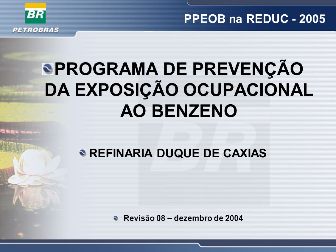PROGRAMA DE PREVENÇÃO DA EXPOSIÇÃO OCUPACIONAL AO BENZENO