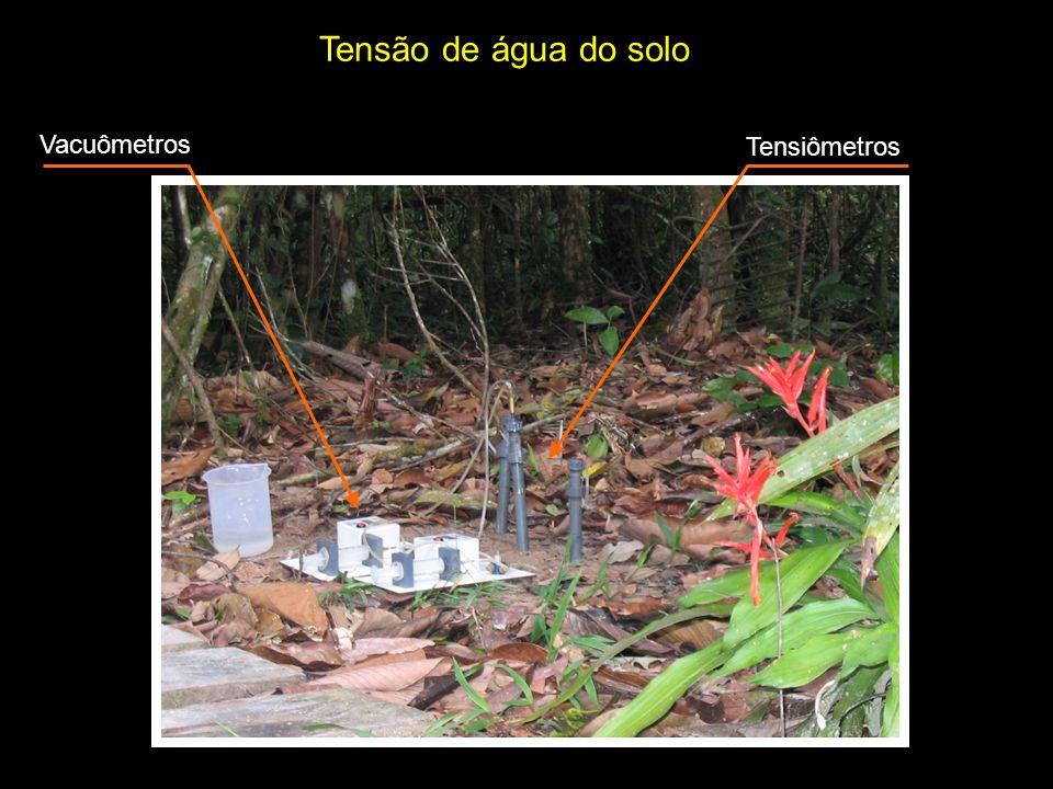 Tensão de água do solo Vacuômetros Tensiômetros
