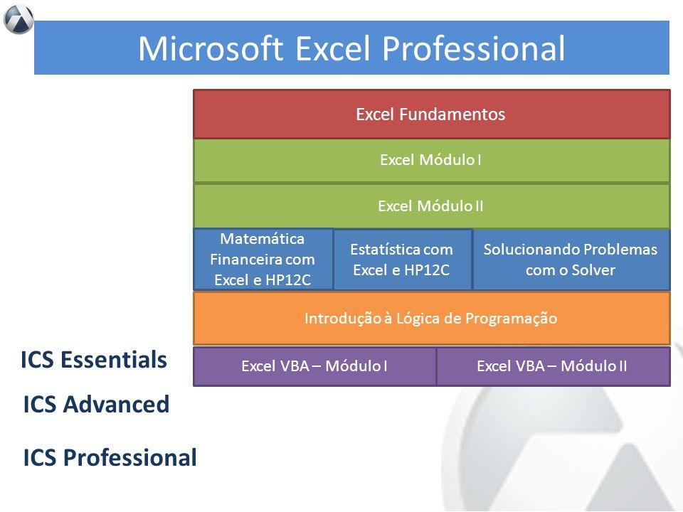 Microsoft Excel Professional