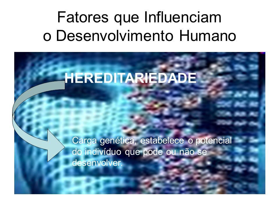 Fatores que Influenciam o Desenvolvimento Humano