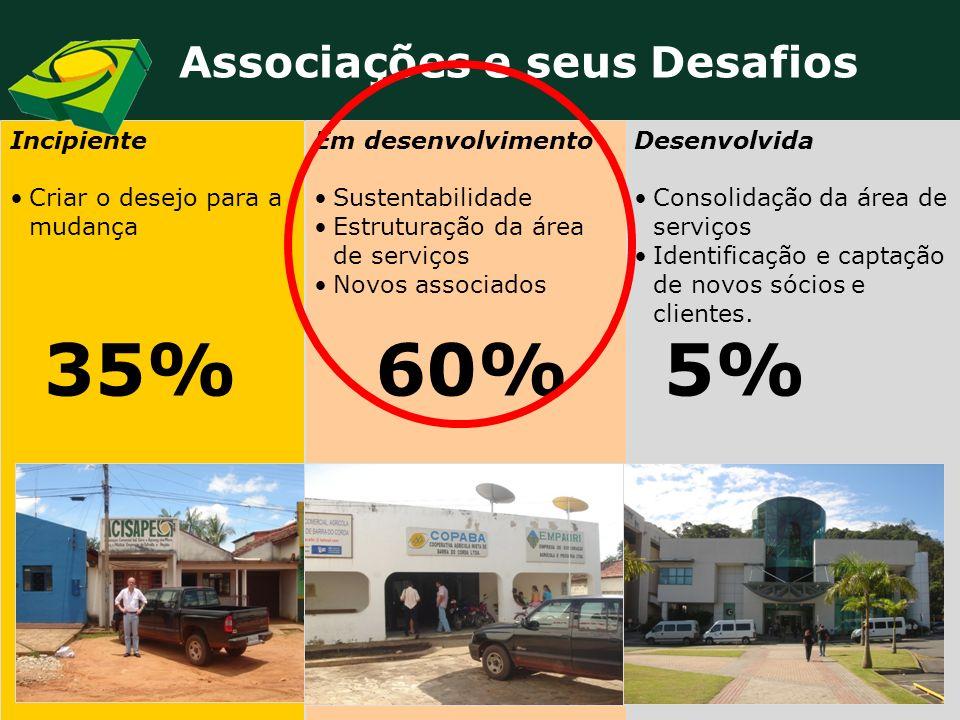 35% 60% 5% Associações e seus Desafios Incipiente