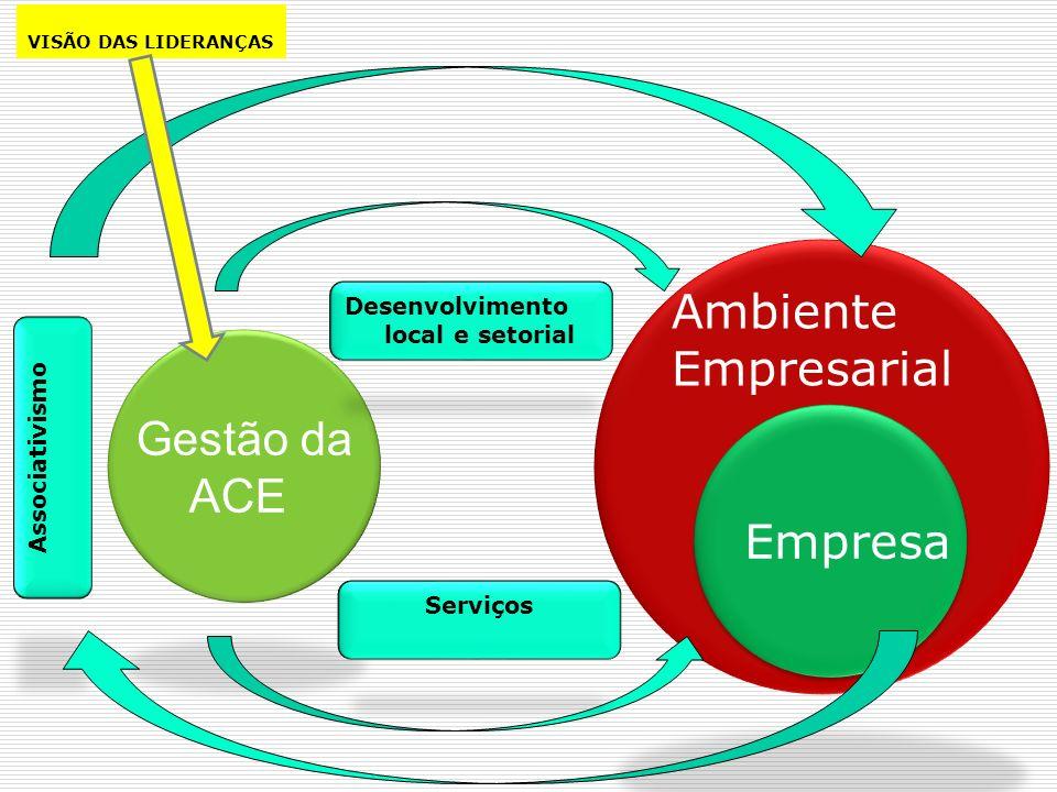 Ambiente Empresarial Gestão da ACE Empresa