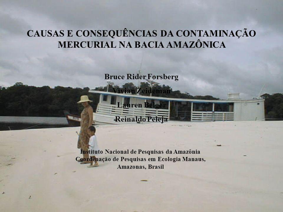 CAUSAS E CONSEQUÊNCIAS DA CONTAMINAÇÃO MERCURIAL NA BACIA AMAZÔNICA