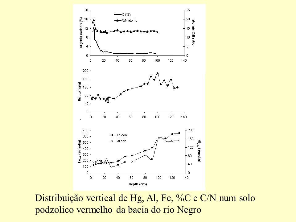 Distribuição vertical de Hg, Al, Fe, %C e C/N num solo
