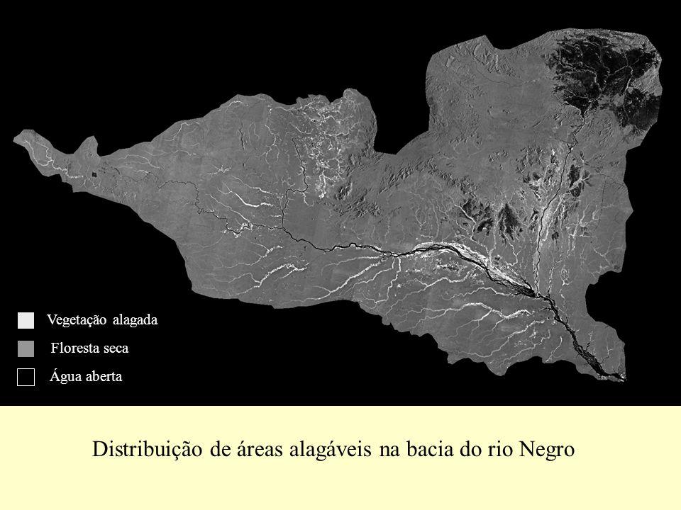 Distribuição de áreas alagáveis na bacia do rio Negro