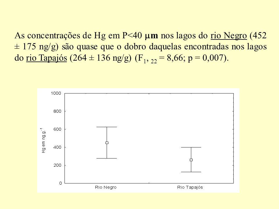 As concentrações de Hg em P<40 m nos lagos do rio Negro (452 ± 175 ng/g) são quase que o dobro daquelas encontradas nos lagos do rio Tapajós (264 ± 136 ng/g) (F1, 22 = 8,66; p = 0,007).