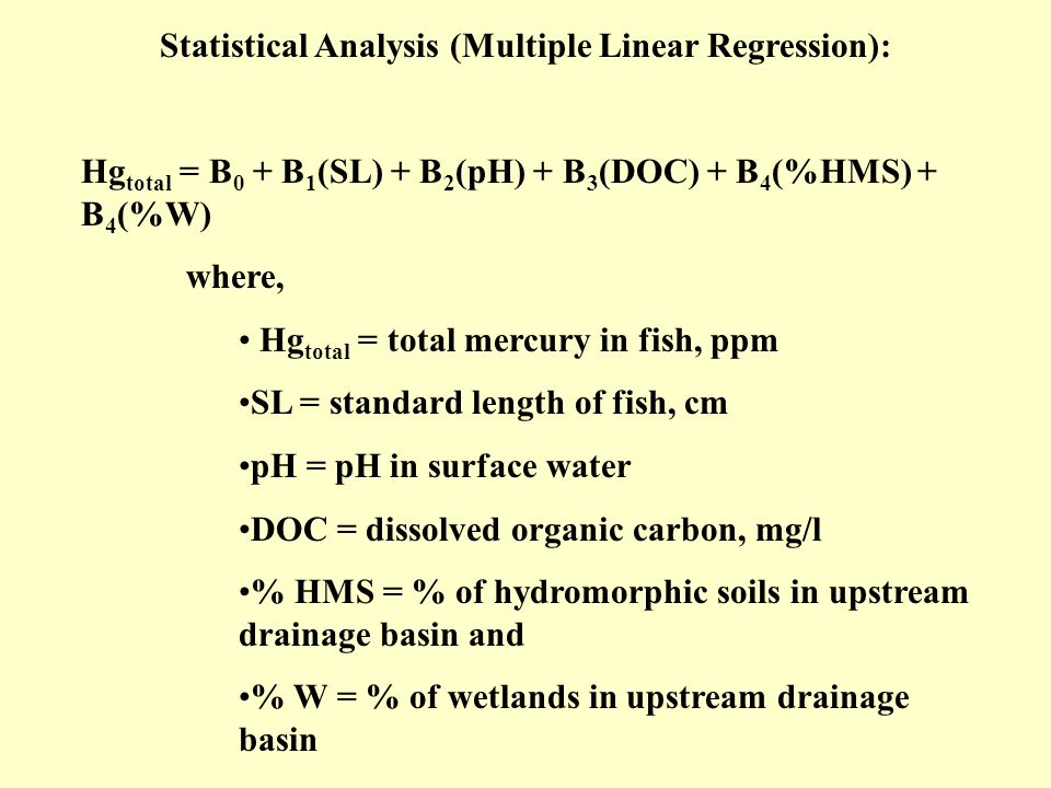 Statistical Analysis (Multiple Linear Regression):