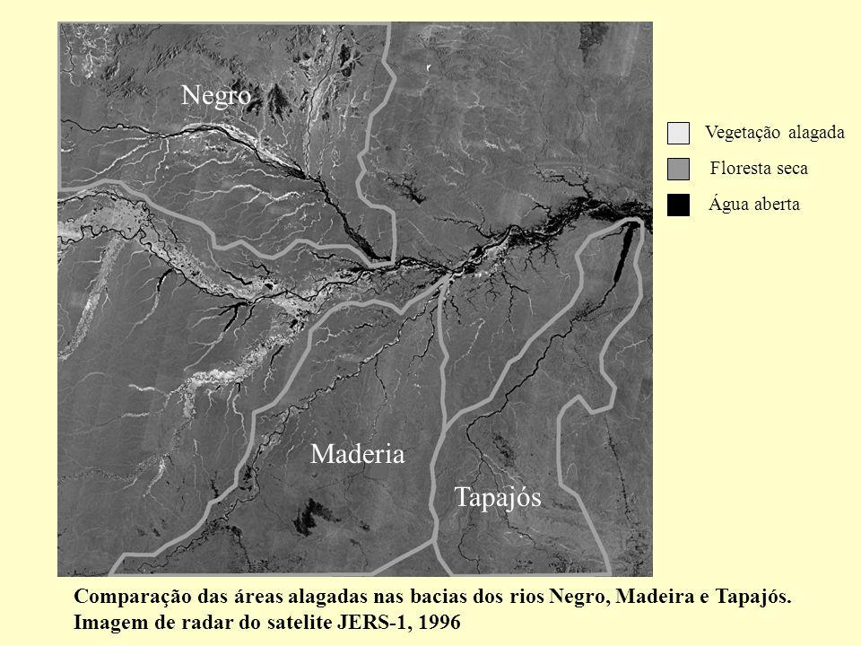 Negro Vegetação alagada. Floresta seca. Água aberta. Maderia. Tapajós.
