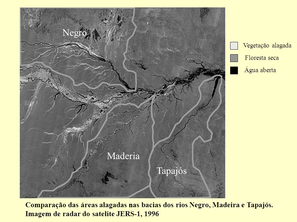 NegroVegetação alagada. Floresta seca. Água aberta. Maderia. Tapajós.
