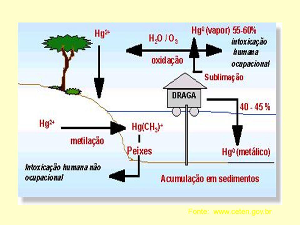 Fonte: www.ceten.gov.br